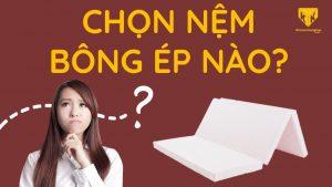 Cách phân biệt một số loại nệm bông ép trên thị trường Chon nem bong ep