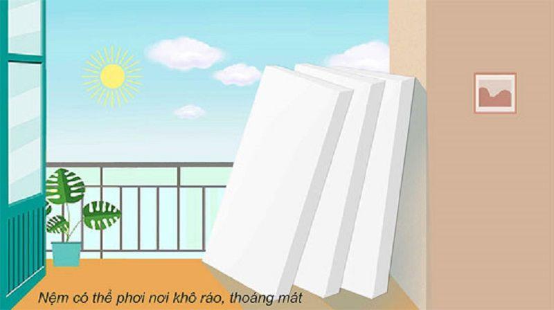 Tác hại của việc nằm nệm bẩn - Cách vệ sinh nệm đơn giản tại nhà Phoi nem 1